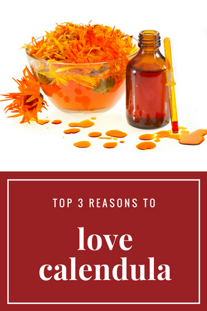 Top 3 Reasons to Love Calendula