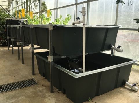 300 Gallon Aquaponic Grow Bed | Sump Tank | Water Container Store