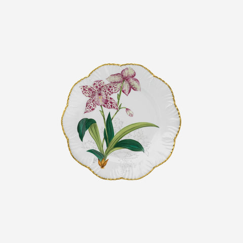 Alberto Pinto | 'Histoires d'Orchidées' Set of Six Handpainted Dinner Plates
