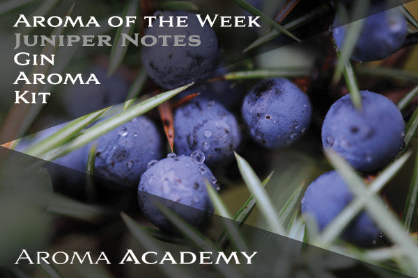 Aroma of the Week: Gin Aroma  Kit: Juniper Notes