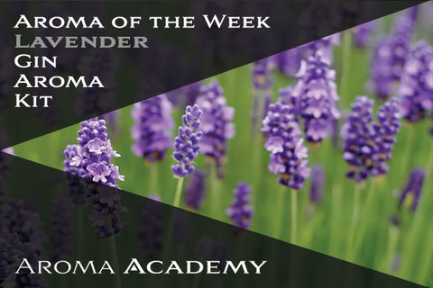 Featured Aroma of the Week : Gin Aroma Kit : Lavender