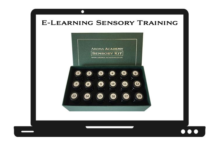 Online E-Learning : Sensory Foundation Course