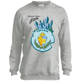 Youth Crewneck Sweatshirt