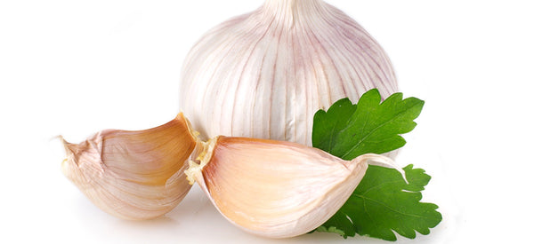 10 HEALTH & WELLNESS BENEFITS OF GARLIC