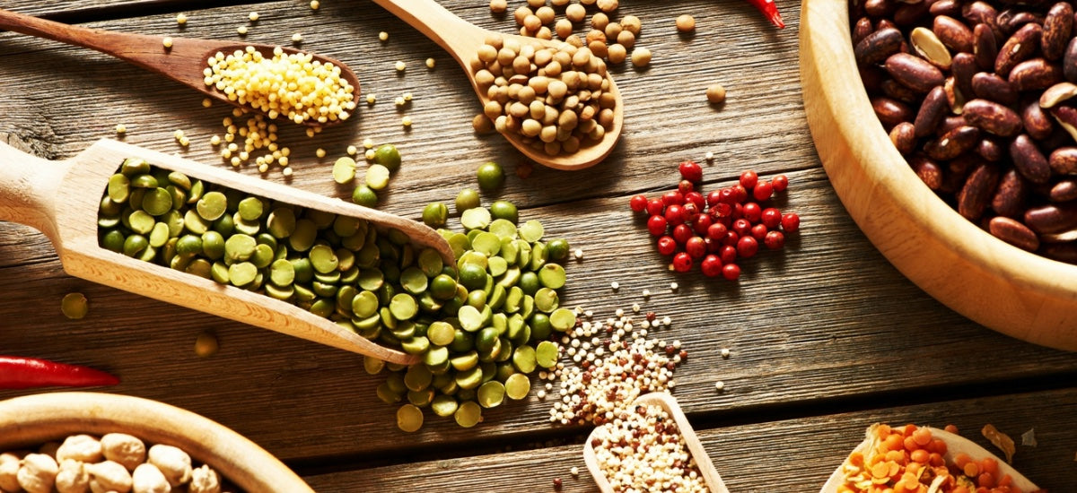 6 TYPES OF LEGUMES: HOW TO BENEFIT FROM THESE PLANT-BASED POWERHOUSES
