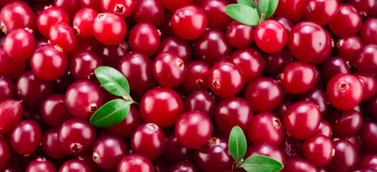 10 HEALTH AND WELLNESS BENEFITS OF CRANBERRIES