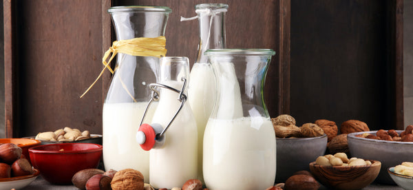 NEED HELP GOING DAIRY-FREE? HERE ARE 6 GREAT SUBSTITUTES