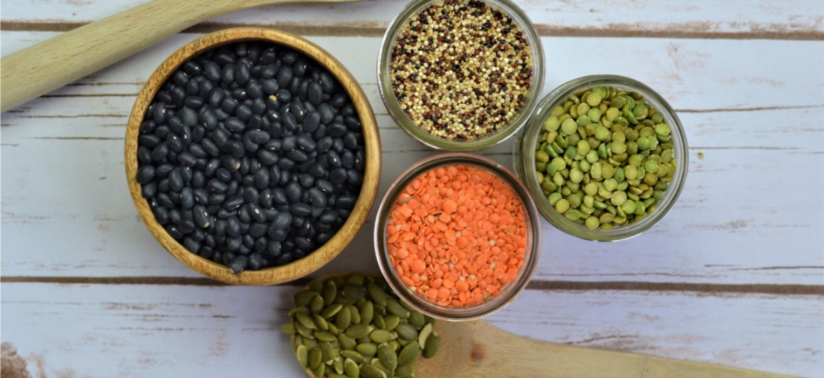 8 PLANT-BASED PROTEINS FOR VIBRANT HEALTH