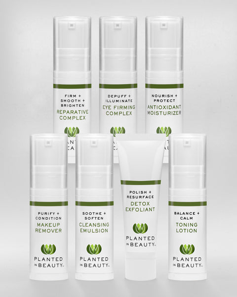 PLANTED IN BEAUTY ORGANIC SKINCARE TRAVEL KIT