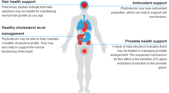 phytosterol health benefits and uses of phytosterol behavior mapping diagram