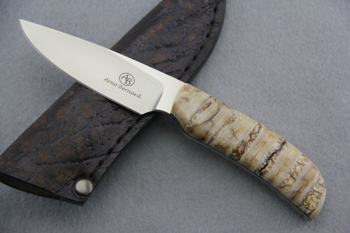 Arno Bernard - Wild Dog Model w/ Mammoth Molar Handle - 4413