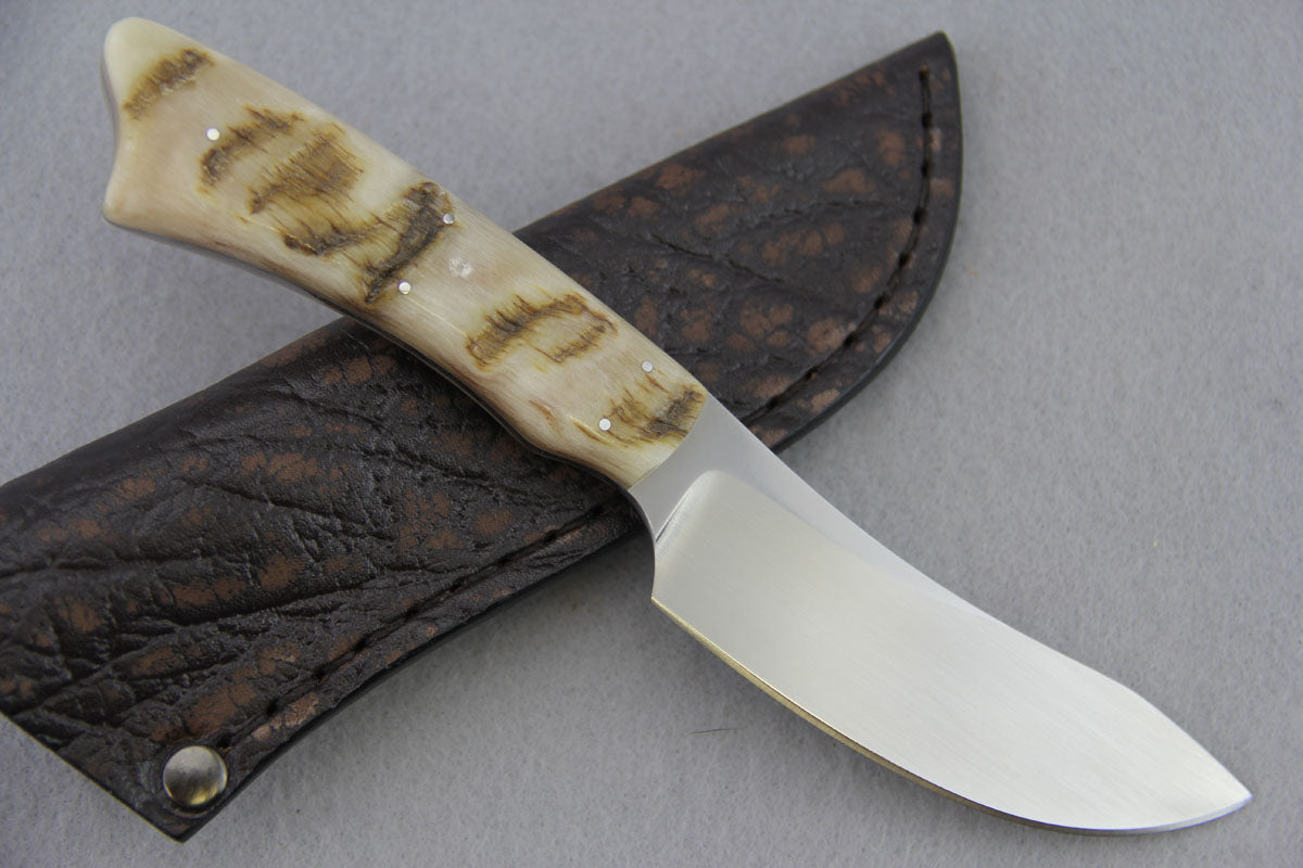 Arno Bernard - Springbok Model w/ Sheep Horn - 3504
