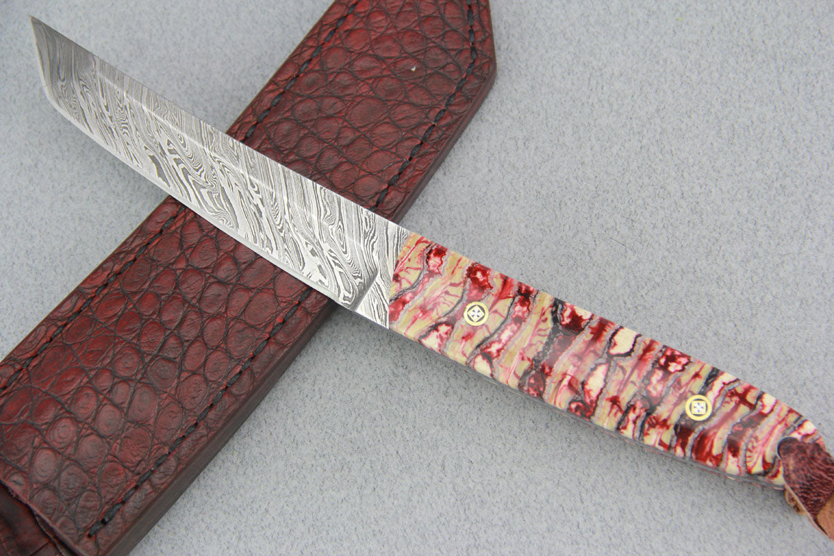 Sam Hawkins Tiger Strip Damascus Tanto with Mammoth Molar