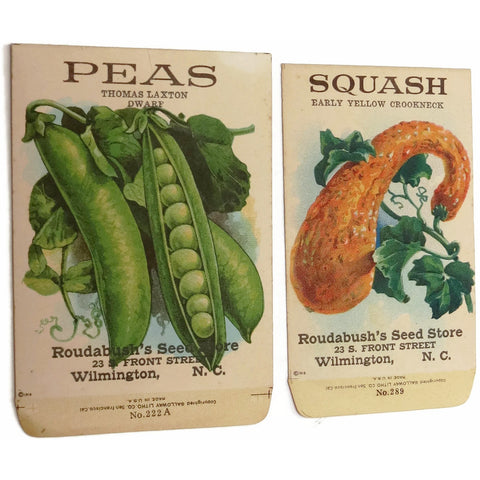 Antique unused vegetable seed packets, Galloway peas and squash, from Wilmington NC seed store (c 1918) - Selective Salvage