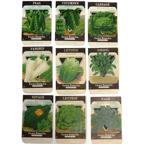 Vintage lot of 9 seed packets by the Card Seed Co. Fredonia NY, unused (c 1920s) - Selective Salvage