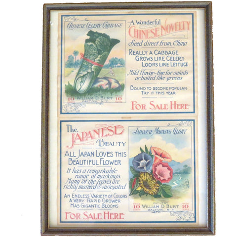"Vintage ""Burts Seeds"" labels, advertising ephemera , framed (c 1910s)"