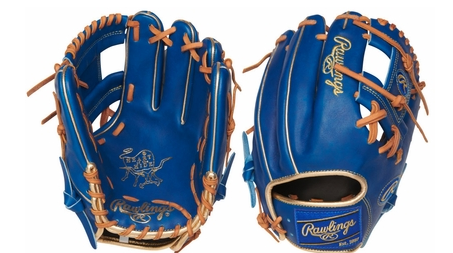2018 Rawlings Gold Glove Club (August) Pro 204 11.5""