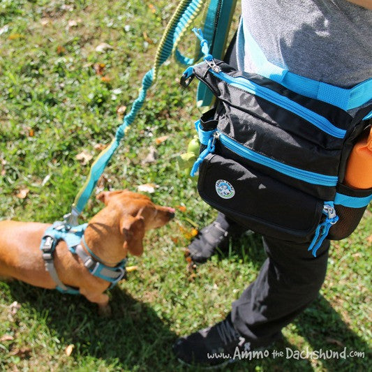 On the Fly Jasper Swag Bag Review by Ammo the Dachshund