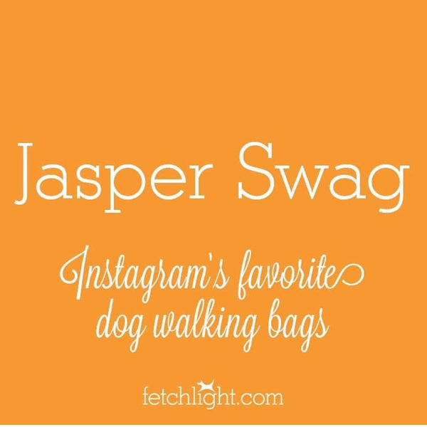 In the News - Fetchlight Blog Post About Jasper Swag