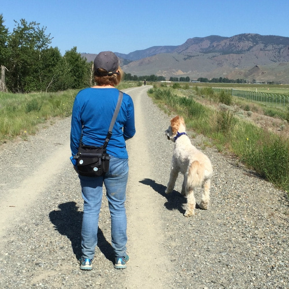 First Impressions of the On the Fly Jasper Swag Dog Walking Bag