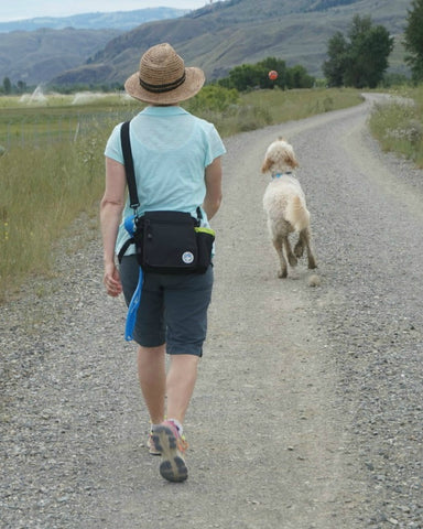 On the Go Jasper Swag Dog Walking Bag