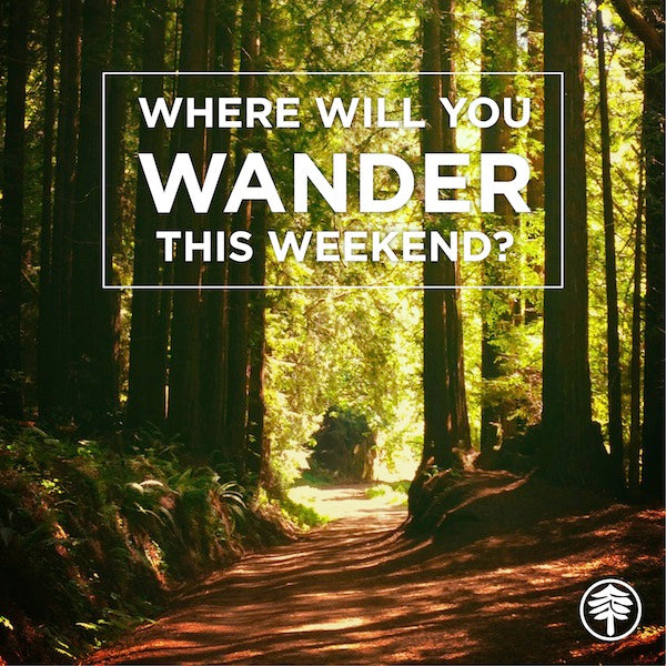 Where will you wander this weekend?