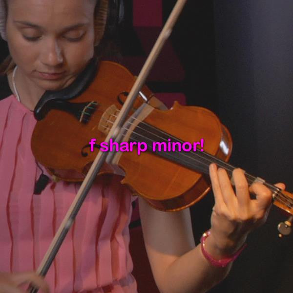 learn to play the fiddle beginner