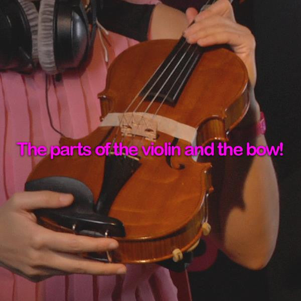 Lesson 200: The parts of the violin and the bow! - violino online, play violin online,   - tocar violin online, уроки игры на скрипке, Metodo Mirkovic - cours de violon en ligne, geige online lernen