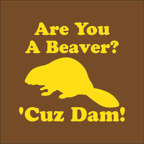 Are You A Beaver