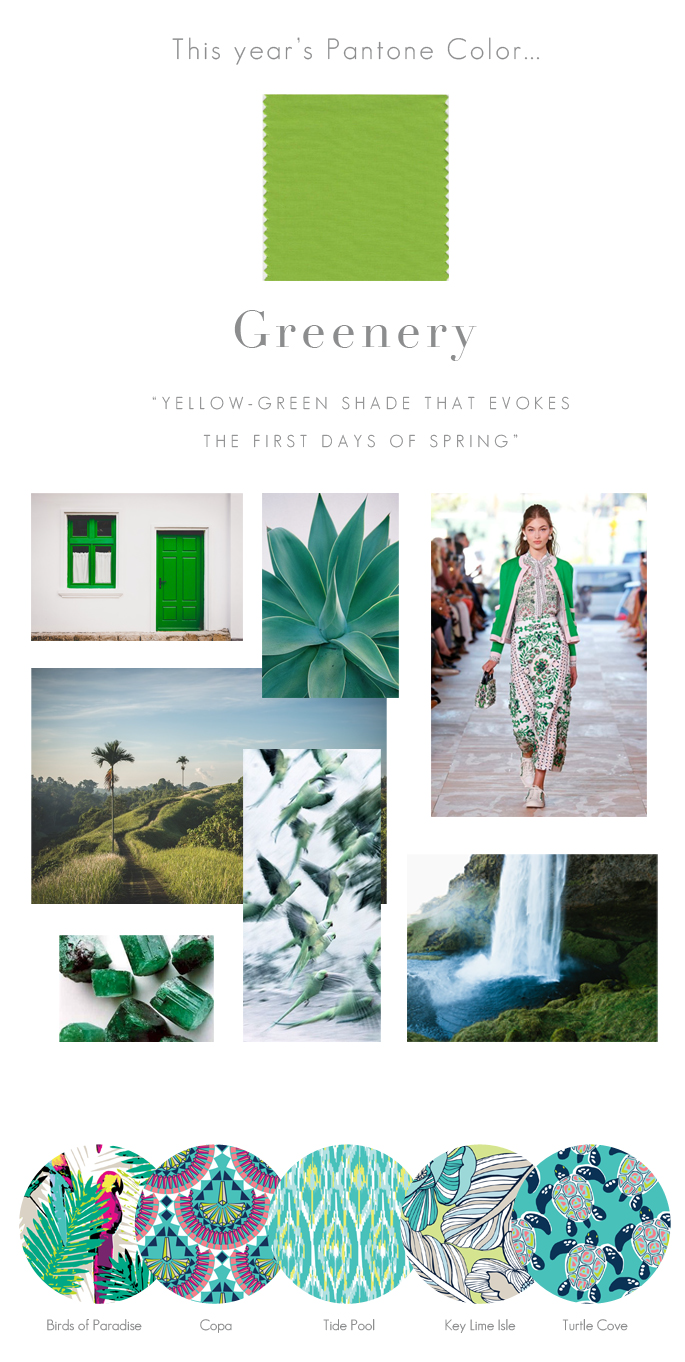 Pantone Color of the Year 2017 Greenery | All For Color