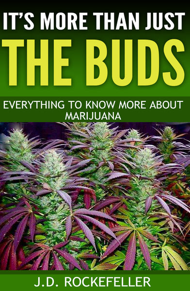 It's More Than Just the Buds: Everything to Know More About Marijuana