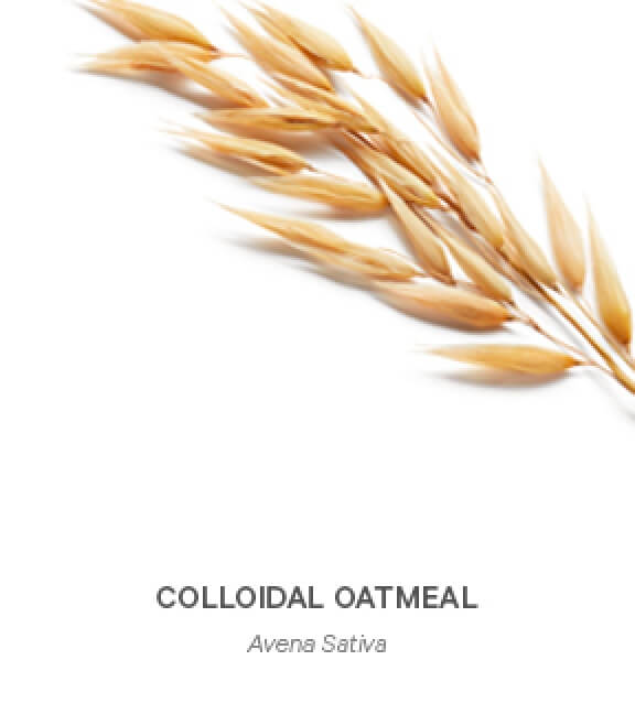 image-Colloidal-Oatmeal