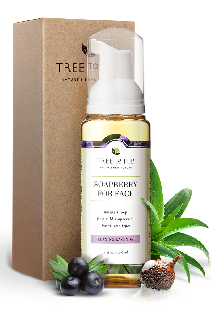 Soapberry face wash
