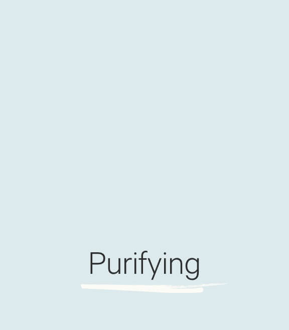 image-Purifying