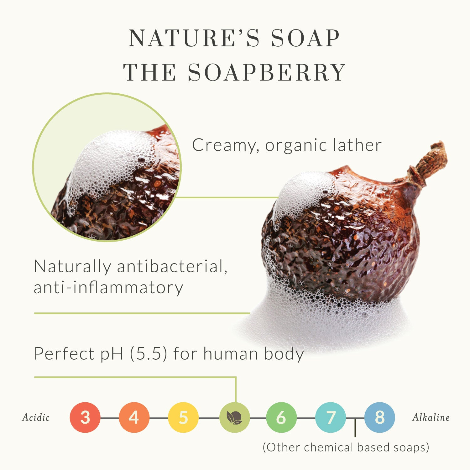 Tree To Tub Nature S Healing Soap