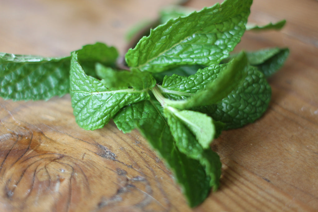 Essential Oil Profile: Peppermint in the USA
