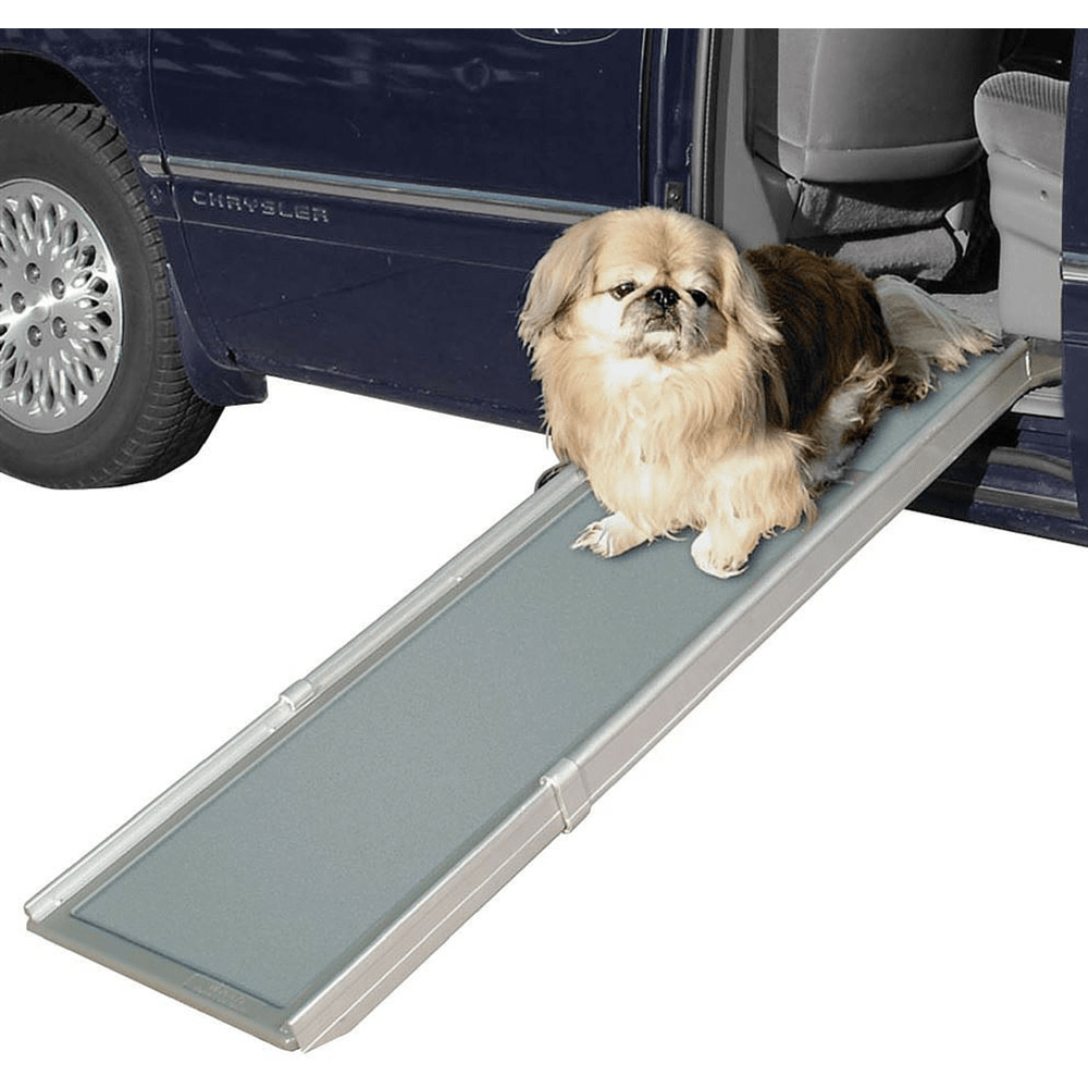 small dog on solvit pet ramp at car