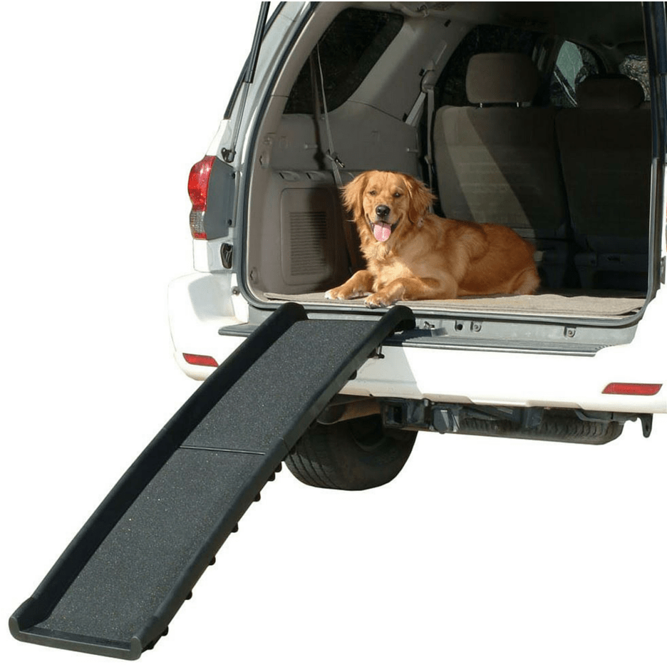 black folding plastic pet ramp with dog in the back of car