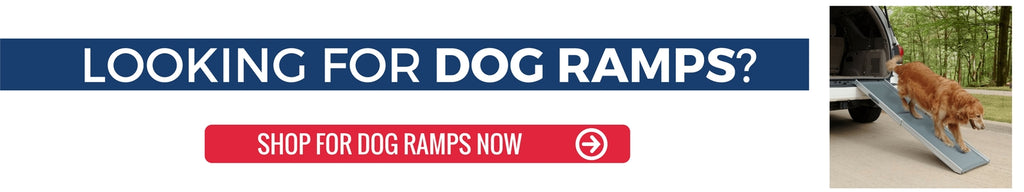 Shop for dog ramps at ramp champ