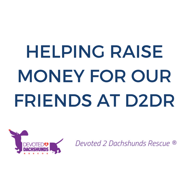 HELPING RAISE MONEY FOR OUR FRIENDS AT D2DR