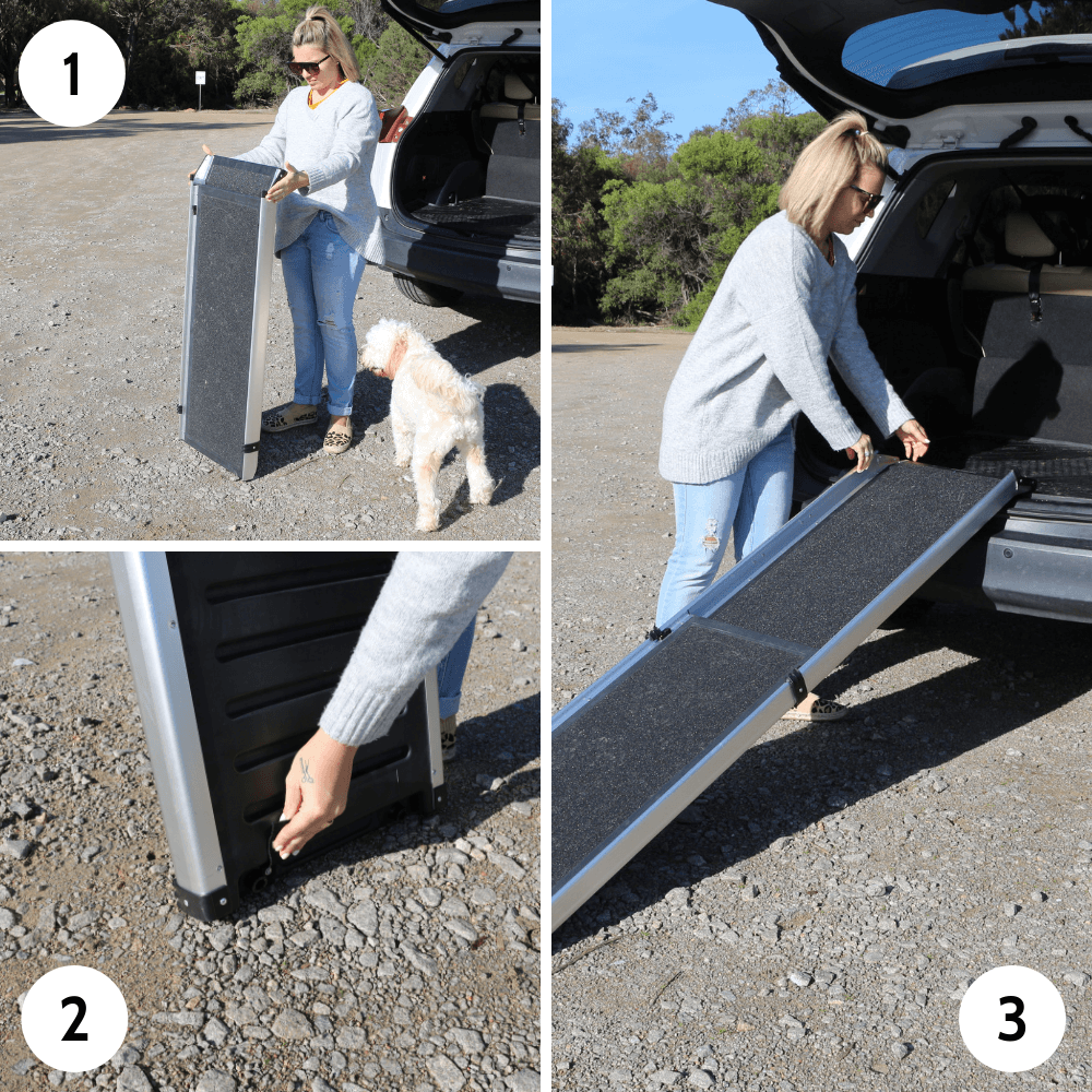 How to use the Heeve 'Up-Ya-Get' Telescopic Pet Ramp