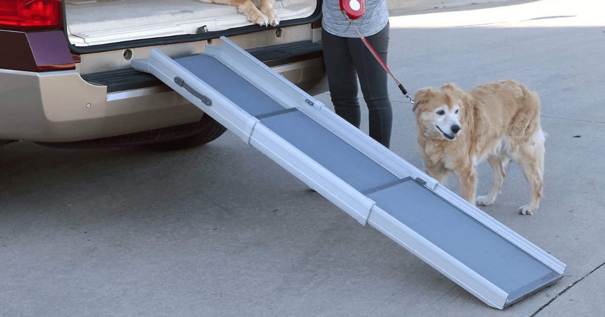 PetSafe Happy Ride Ultra-Compact Deluxe Tri-Scope 3-Part Telescopic Dog Ramps - Ramp Champ