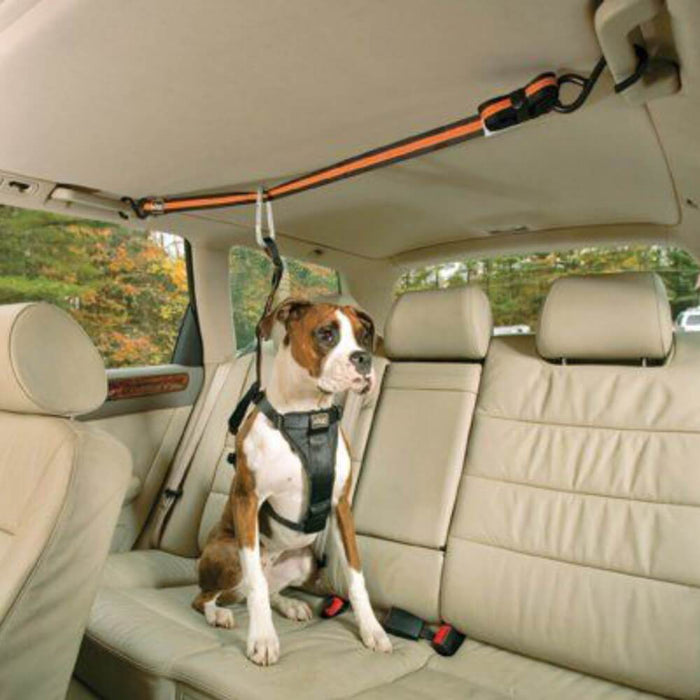 Kurgo® Leash & Zip Line Adjustable Dog Vehicle Restraint - Kurgo - Ramp Champ