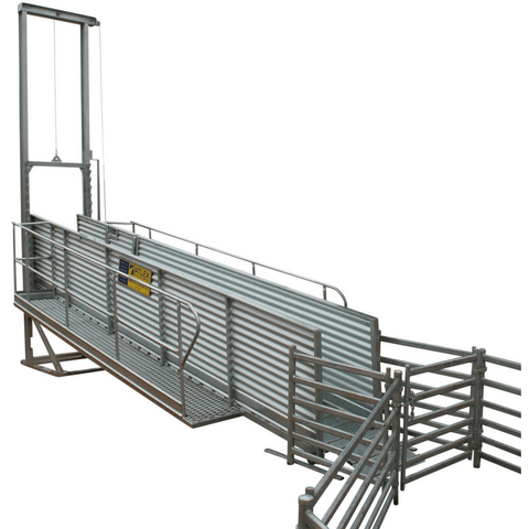 Atlex 8m Height Adjustable Permanent Sheep Loading Ramp - Atlex - Ramp Champ