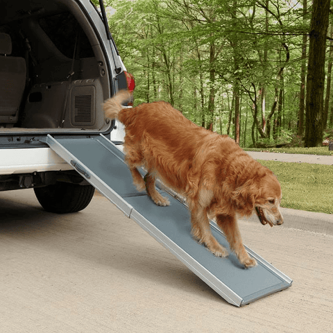 Solvit Deluxe Telescoping Pet Ramp - Solvit - Ramp Champ