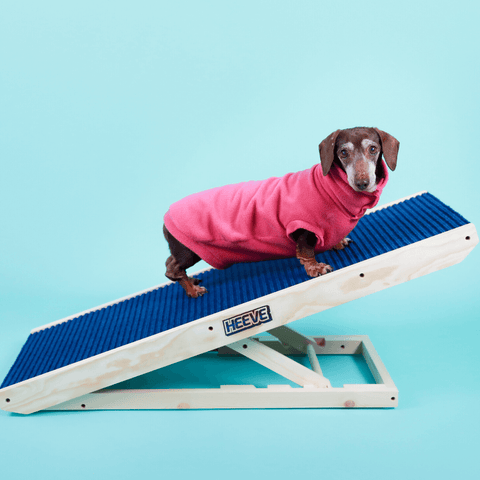 Heeve 'Up-Ya-Get' Wooden Dog Ramp For Beds & Couches - Ramp Champ