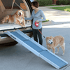 Image of Solvit Deluxe Tri-Scope Pet Ramp - Solvit - Ramp Champ