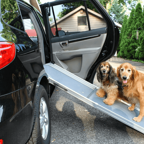 Solvit Side Door Adapter for Pet Ramps - Solvit - Ramp Champ