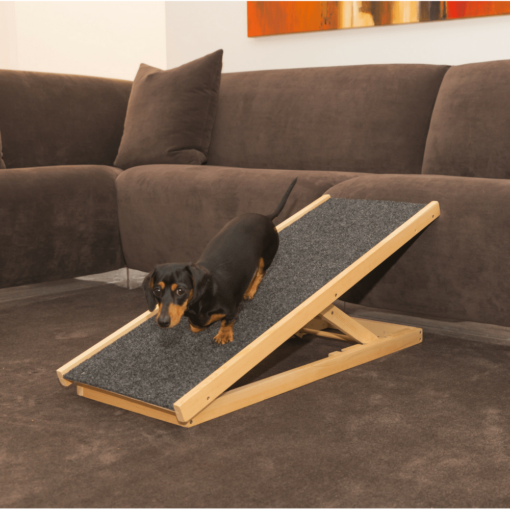 Travelling Pooch Ezy Ramp Pet Ramp Ramp Champ