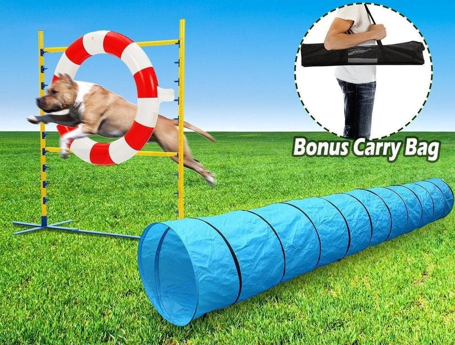 Pet Dog Agility Jump Training Set - Ramp Champ - Ramp Champ